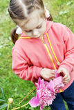 Little beautiful girl with big peony flower in the garden Stock Photos