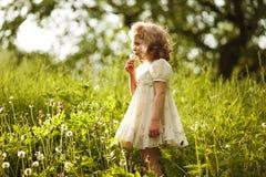 Little beautiful girl blowing a dandelion Stock Image