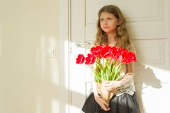 Little beautiful girl with bouquet of red tulips, present for mother, father day. Background sunny interior room stock photos