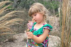 Little beautiful girl collects wild flowers. royalty free stock photo