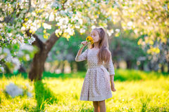 Little beautiful girl enjoying smell of flowes in spring apple garden Royalty Free Stock Images