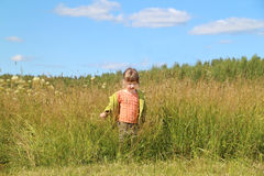 Little beautiful girl goes among grass at green meadow Royalty Free Stock Photography