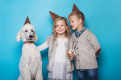 Little beautiful girl and handsome boy with dog celebrate birthday. Friendship. Family. Studio portrait over blue background. Little beautiful girl and handsome stock photo