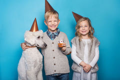 Little beautiful girl and handsome boy with dog celebrate birthday. Friendship. Family. Studio portrait over blue background Royalty Free Stock Photos