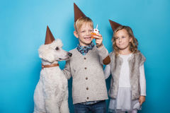 Little beautiful girl and handsome boy with dog celebrate birthday. Friendship. Family. Studio portrait over blue background. Little beautiful girl and handsome royalty free stock photography