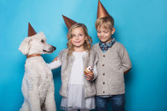 Little beautiful girl and handsome boy with dog celebrate birthday. Friendship. Family. Studio portrait over blue background Royalty Free Stock Images