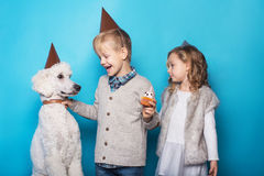 Little beautiful girl and handsome boy with dog celebrate birthday. Friendship. Family. Studio portrait over blue background stock image