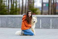 A little beautiful girl with her pet dog Stock Images