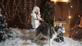 Little beautiful girl holds on a leash two unruly dogs husky near Christmas tree stock footage