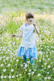 Little beautiful girl holds white dandelion Royalty Free Stock Photos