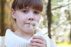Little beautiful girl holds white dandelion Stock Photography