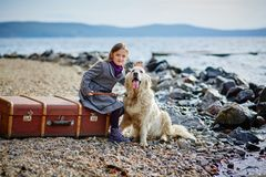 Little beautiful girl walks on the beach with the dog, Retriever Stock Photography