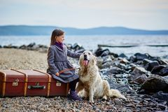 Little beautiful girl walks on the beach with the dog, Retriever Royalty Free Stock Images