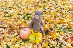 Little beautiful girl in warm clothes sits with pumpkin among autumn foliage. Royalty Free Stock Photography