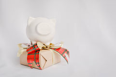 Little beautiful piggy bank and gift box on white background , v Stock Image