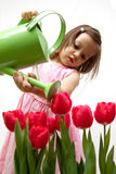 Little beauty. Little toddler girl in a pink dress droping the red tulips Stock Photos