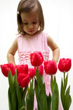 Little beauty. Little toddler girl in a pink dress looking the red tulips Royalty Free Stock Photo