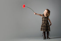 Little beauty girl with red flower. She reach out her's hand with gerbera towards light Stock Photos