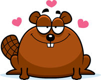 Little Beaver in Love Royalty Free Stock Photography