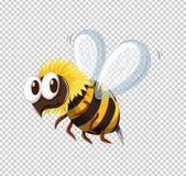 Little bee flying on transparent background. Illustration vector illustration