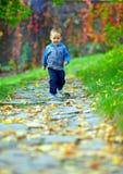 Little behandla som ett barn pojken som kör i höstpark Arkivbild