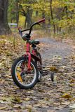 Little bike in autumn forest. Royalty Free Stock Images