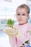 Little biologist Stock Photos