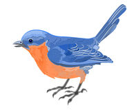 Little bird blue orange. A little bird cute elegant blue orange vector illustration abstract Stock Photo