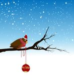 little bird on a branch and snow i Stock Photo