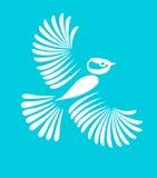 Little bird,  Stock Photo