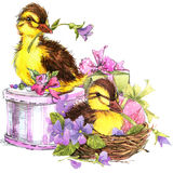 Little bird, gift and flowers background Stock Images
