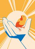 Little bird in hand. vector flat illlustration. Releasing the sparrow to freedom. poster with sun on background Royalty Free Stock Photo