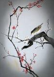 A little bird Stock Photography