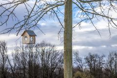 Little Birdhouse hanging in a tree Stock Image