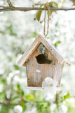 Little Birdhouse in Spring with blossom sakura Stock Image