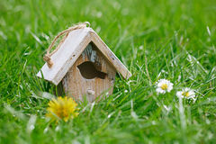 Little Birdhouse in Spring new grass Royalty Free Stock Image