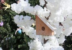 Little birdhouse in spring over blossom cherry tree stock photo