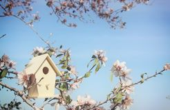 Little birdhouse in spring over blossom cherry tree. Little birdhouse in spring over blossom cherry tree stock images