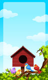 Little birds and bird house Royalty Free Stock Image