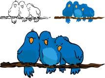 Little Birds: Resting Stock Image