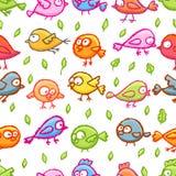 Little birds seamless pattern Royalty Free Stock Photo