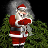 A Little Bit More for Santa. A Little Bit More for Sata: Santa caught smoking from a bong in front of a crop of marijuana plants. Bah Humbug Stock Images