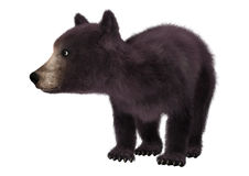 Little Black Bear. 3D digital render of a cute little black bear isolated on white background Stock Photo