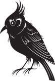 Little black cartoon bird Stock Images