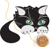 Little black kitten playing with a ball of yarn Royalty Free Stock Images