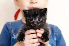 Little black kitten portrait Royalty Free Stock Photos