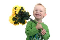 Little blond boy. With flowers in his hands smiling Royalty Free Stock Photos