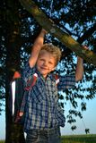 Little blond boy is hanging on the tree with schoolbag Stock Image