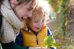 A little blond boy and his mom play outside. An autumn day Stock Photo