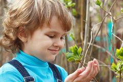 Little blond boy holding bloom leaves outdoors stock photo